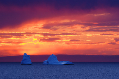 Icebergs at sunset - Anse-aux-Meadows