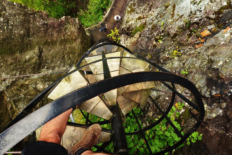 Escalier en colimaçon sur le sentier des Paysages - Parc national d'Aiguebelle, Abitibi, Québec