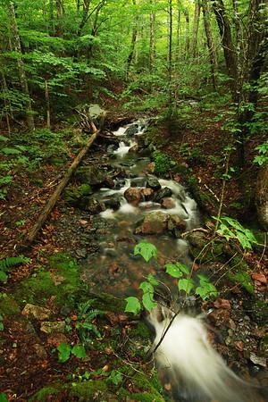 """Ruisseau - Sentier """"Trous de Saumons"""", Parc national des Hautes-Terres-du-Cap-Breton, Nouvelle-Écosse"""