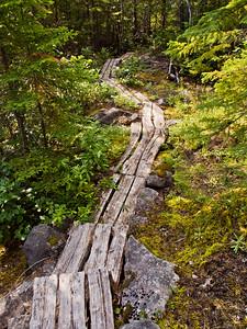 Trottoir de bois - Sentier le Fjord