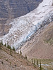 Hikers and Mist glaciers