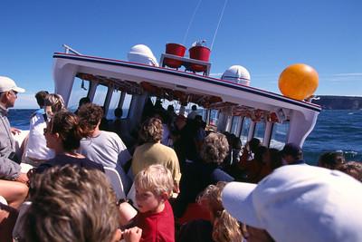 En route vers l'île Bonaventure Boat tour to Bonaventure island