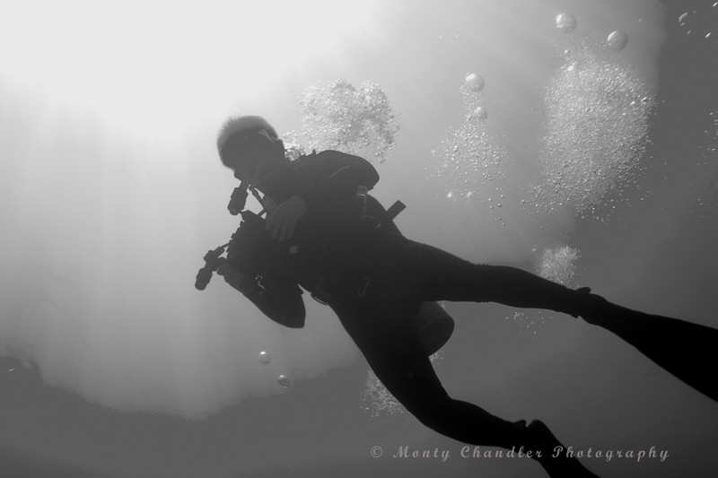 Cayman Islands Diving - Spring 2016