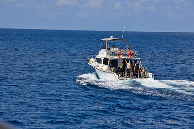 Reef Divers - Little Cayman