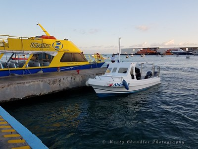 Our dive boat - Aldora Divers!