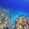 Columbia Deep