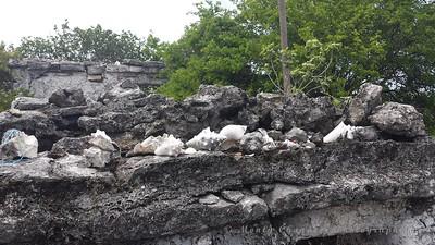 Ruins of Laguna Ciega