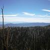 Ancient Bristlecone Pine Forest...