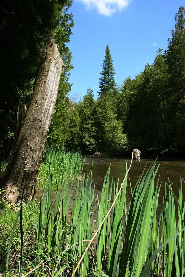 2010-May: Hiking along the Northern Credit River