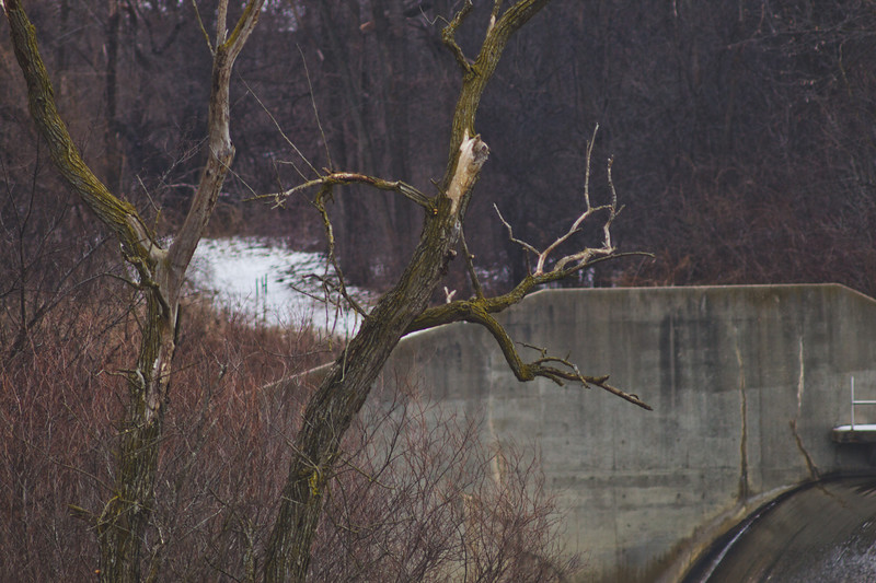 Soft Cloudy Day at Stepping Stone Falls in Flint Michigan Photograph 20