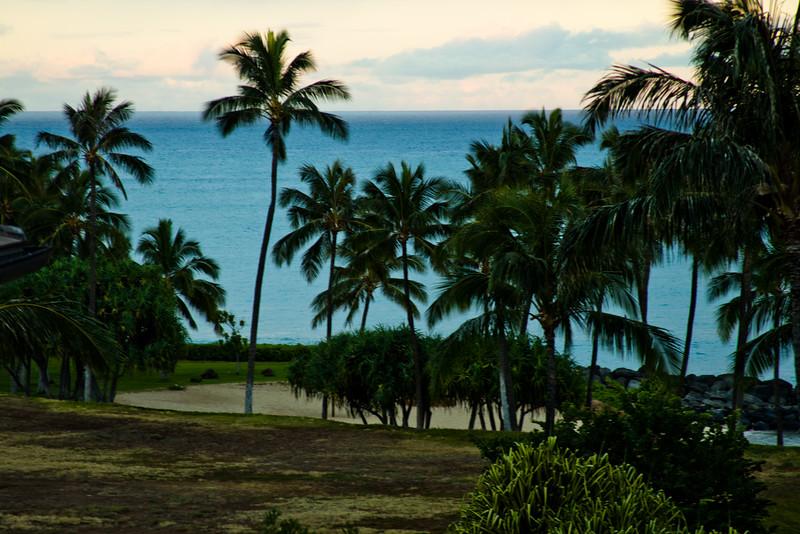 Journey into Oahu Photograph 2