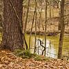Richfield County Park Sleeping Spring 207