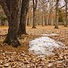 Richfield County Park Sleeping Spring 202