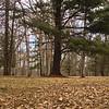 Richfield County Park Sleeping Spring 214