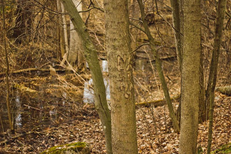Richfield County Park Sleeping Spring 272