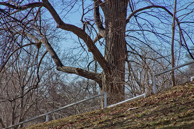 22 Sleeping Spring in Kearsley Park, Flint Michigan, USA