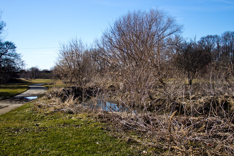 74 Sleeping Spring in Kearsley Park, Flint Michigan, USA