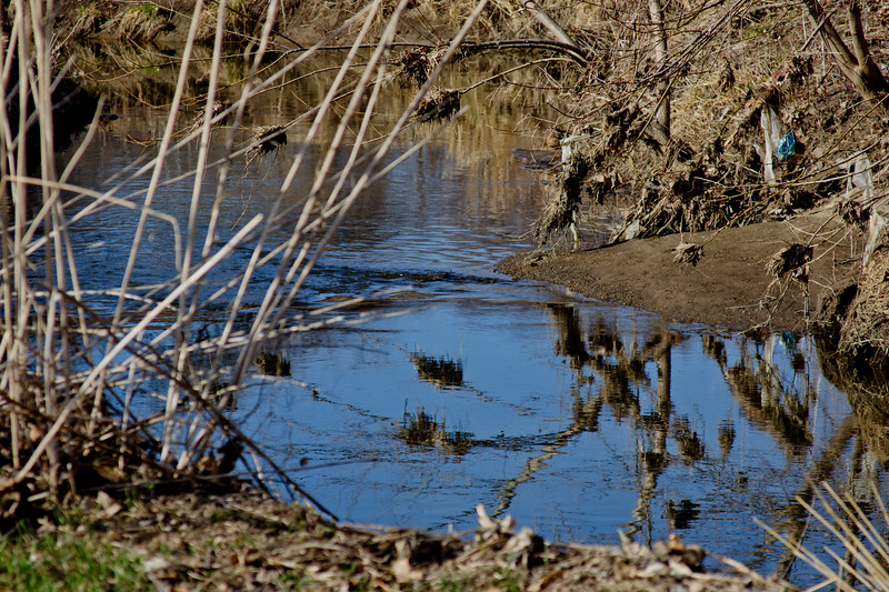 61 Sleeping Spring in Kearsley Park, Flint Michigan, USA