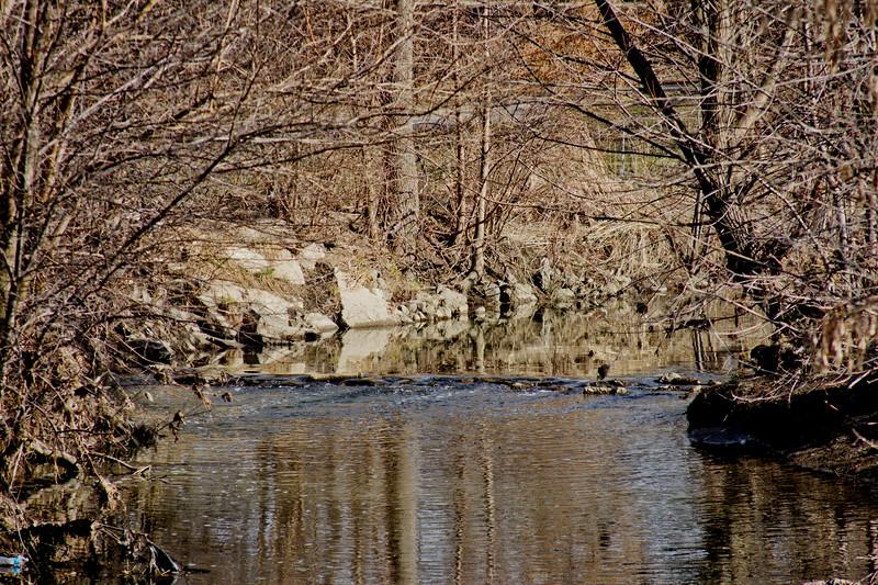 51 Sleeping Spring in Kearsley Park, Flint Michigan, USA