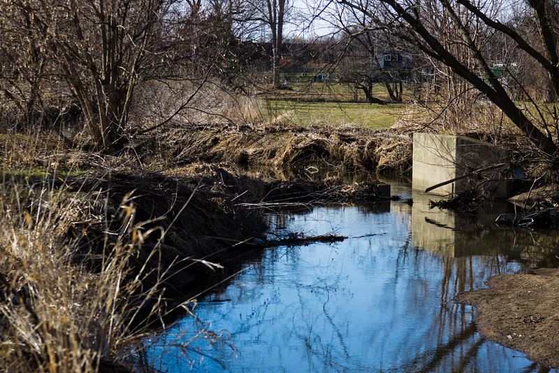 76 Sleeping Spring in Kearsley Park, Flint Michigan, USA