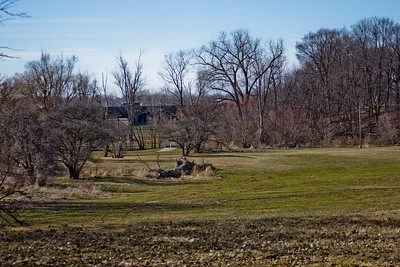 4 Sleeping Spring in Kearsley Park, Flint Michigan, USA