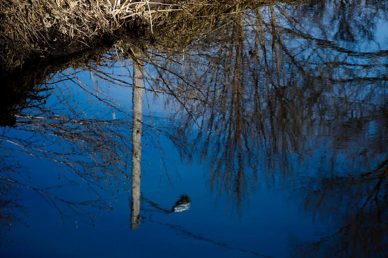 100 Sleeping Spring in Kearsley Park, Flint Michigan, USA