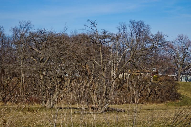 103 Sleeping Spring in Kearsley Park, Flint Michigan, USA