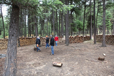 Parents Weekend October 2017: Checking out the firewood the boys put up for the winter.