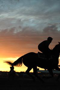 6.00am  jokey and  horses  on the morning track