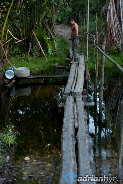 This type of wood bridge was typical for the ~3 hour walk in we did at night in the pitch black.  This is near the indigenous camp.  In the foreground is yuca which is left to soak for a month before being dried and converted to harina