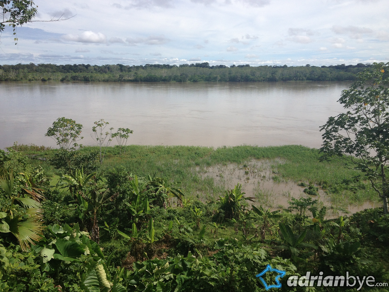 A typical view of the amazon river