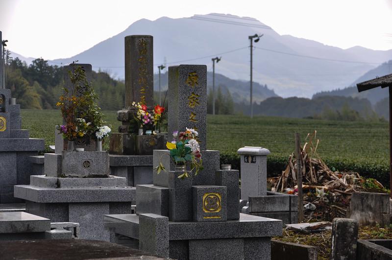 Buddhist Graveyard