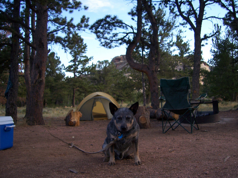 It's Huck! - Brit's dog with us at the Vedauwoo campground.
