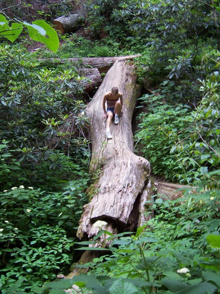 Elisabeth and a big log