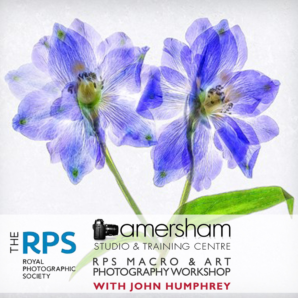 RPS Macro and Art Photography Workshop with John Humphrey