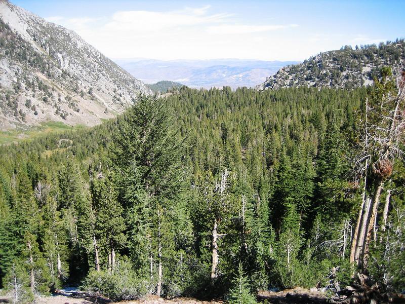 Relay Peak hike