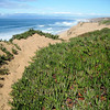 Shots from our bike ride along the Monterey Coastal trail beginning at Fort Ord Dunes State Park in Seaside and ending in Pacific Grove