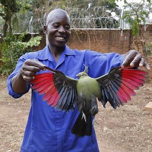 Life in Lilongwe, Malawi