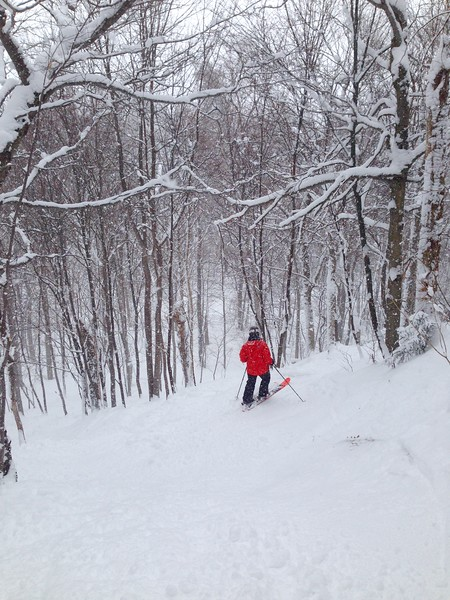 Glades at Stowe. Photo credit Nellie.