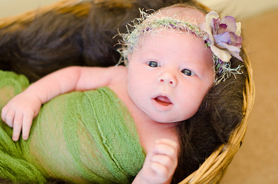 Nia's Newborn Photo Shoot