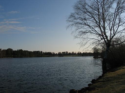 The lake near us.