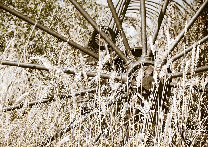 Old Iron Wheel on Farm Machinary in Rural America