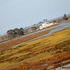 Bayland TC_06-11-10_0047