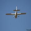 Bayland TC_06-11-10_0066