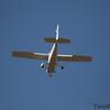 Bayland TC_06-11-10_0065