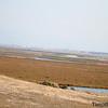 Bayland TC_06-11-10_0045