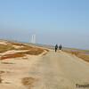 Bayland TC_06-11-10_0007