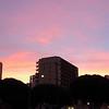 San Fran_11-12-10_0066