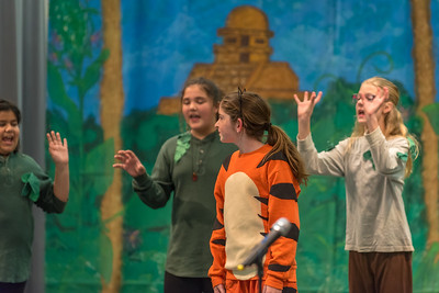 Photo from Hurley School Play - Jungle Book