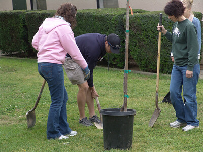 Image from work project at Ivanhoe Elementary School for Serve Visalia Day.  Photo by Greg Halliwill.